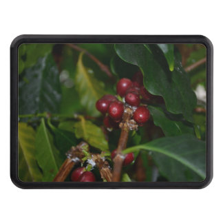 Columbian Coffee Beans Trailer Hitch Cover