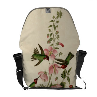 Columbian Humming Bird Messenger Bag
