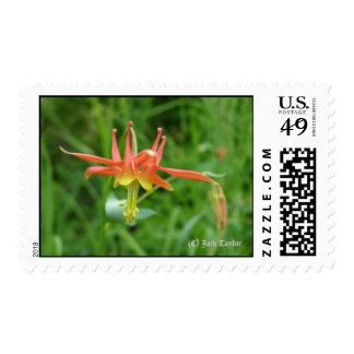 Columbine 01 postage stamp