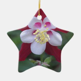 Columbine Ceramic Ornament
