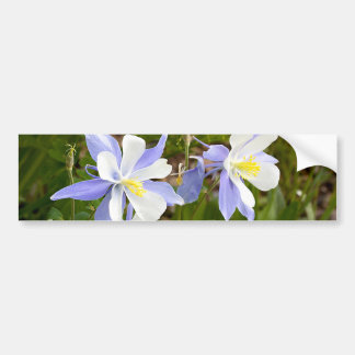 Columbine Family Bumper Sticker
