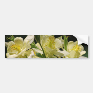 Columbine flower and its meaning bumper sticker