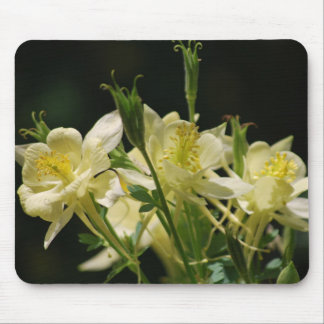 Columbine flower and its meaning mouse pad