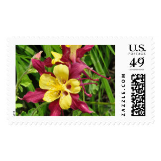 Columbine flower Large First Class postage