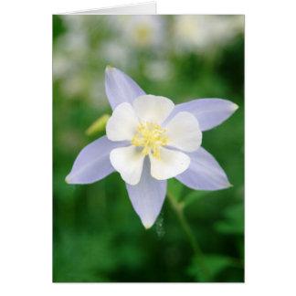 Columbine Flower Notecard
