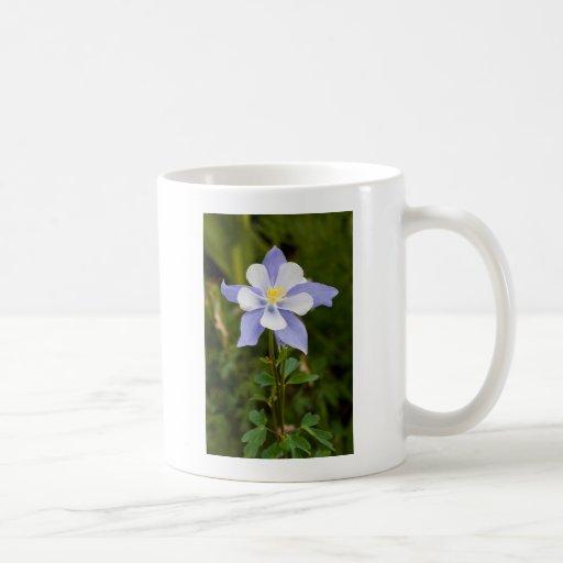 Columbine hermoso taza básica blanca