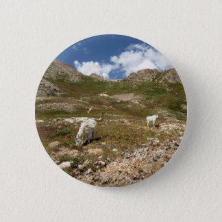 Columbine Lake Mountain Goats  - Colorado Button