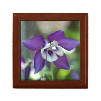 Columbine photo gift box