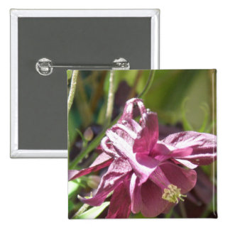 Columbine Pictures Square Magnet Buttons