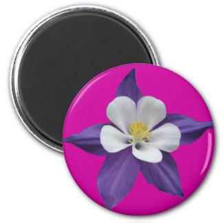 Columbine Purple and White Flower Magnet
