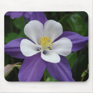 Columbine Purple and White Flower Mousepad