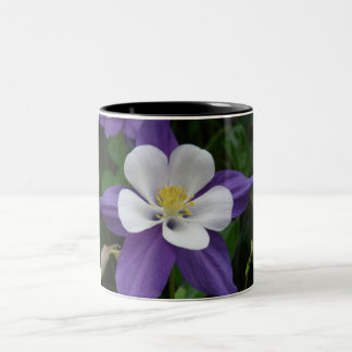 Columbine Purple and White Flower Two-Tone Coffee Mug