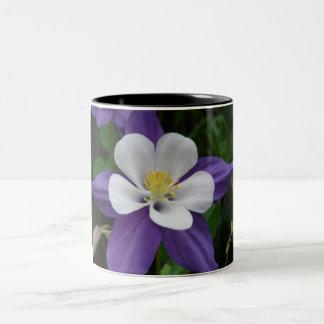 Columbine Purple and White Flower Two-Tone Coffee Mug