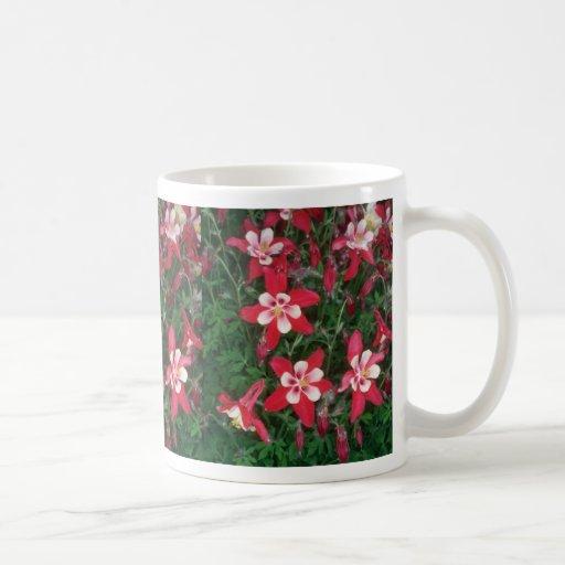 Columbine rojo, (Aquilegia Hybride) flores Tazas