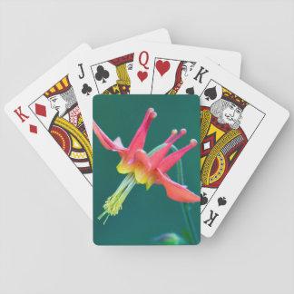 Columbine rojo barajas de cartas