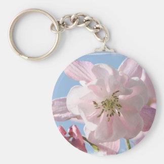 Columbine rosado florece llavero