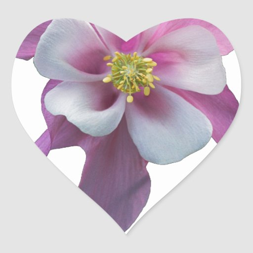 Columbine rosado calcomania de corazon personalizadas