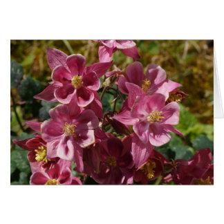 Columbine rosado tarjeta de felicitación