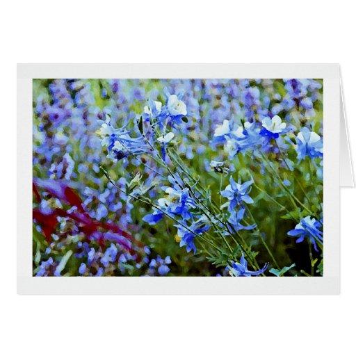 Columbines azul - flores tarjeta pequeña