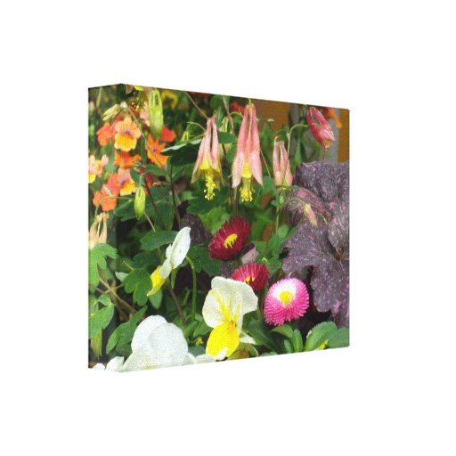 Columbines Garden Canvas Print