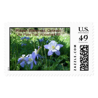 Columbines, Rawah Wilderness Postage