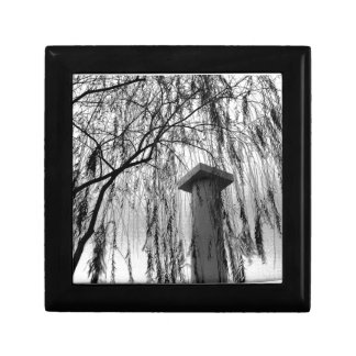 Column Under Weeping tree Black and White Picture Trinket Boxes