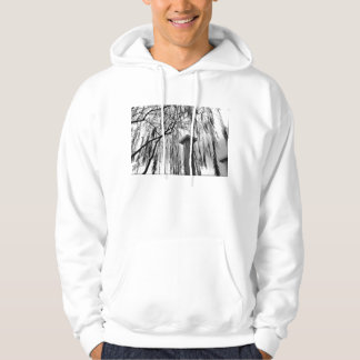 Column Under Weeping tree Black and White Picture Hoodie