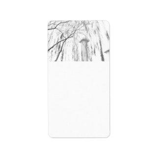 Column Under Weeping Tree High Dynamic range Custom Address Label
