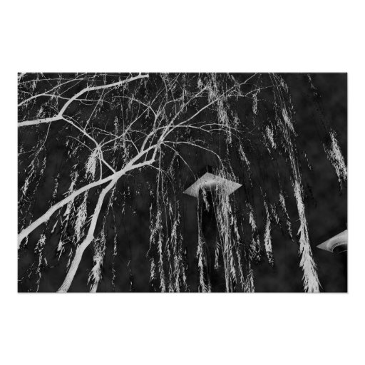 Column Under Weeping Tree Reverse Negative Posters