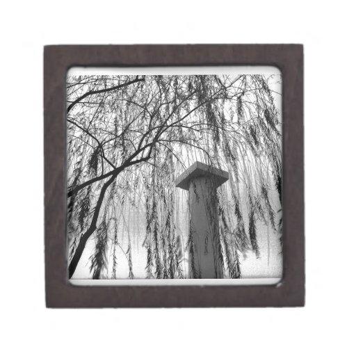 Columna bajo imagen blanco y negro del árbol que l cajas de joyas de calidad