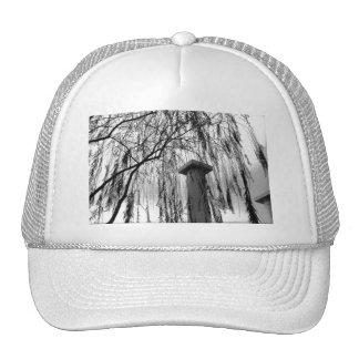 Columna bajo imagen blanco y negro del árbol que l gorras de camionero