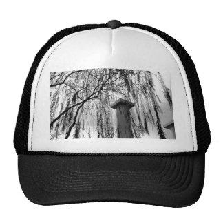 Columna bajo imagen blanco y negro del árbol que l gorro de camionero