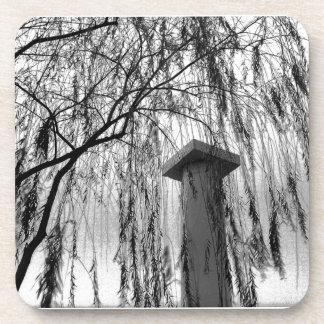 Columna bajo imagen blanco y negro del árbol que l posavasos