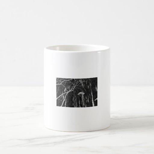 Columna bajo negativa reversa del árbol que llora tazas de café