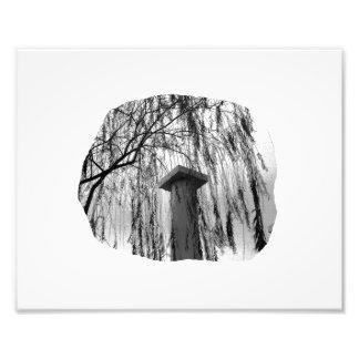 Columna bajo recorte del árbol que llora arte con fotos