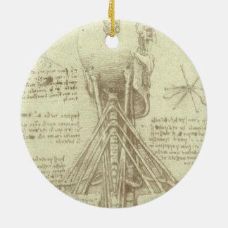 Columna espinal de la anatomía humana de Leonardo Adorno Redondo De Cerámica