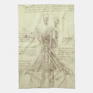 Columna espinal de la anatomía humana de Leonardo Toalla De Cocina
