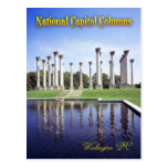 Columnas del capitolio nacional, Washington DC Tarjeta Postal