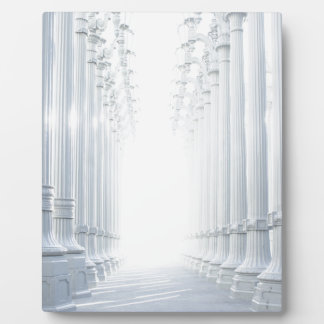 columns-801 plaque