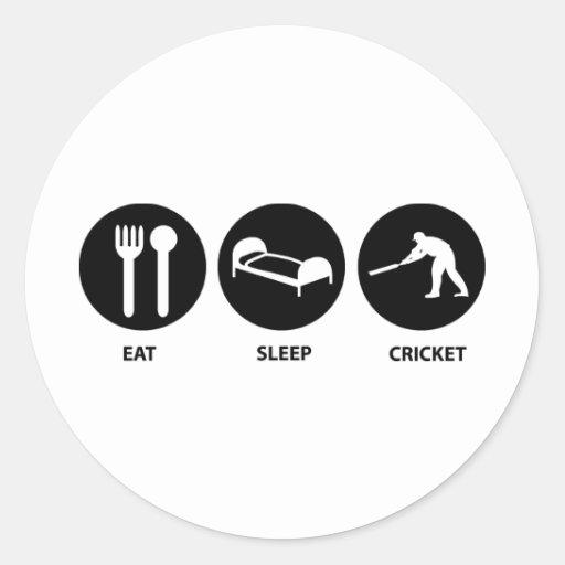 Coma el grillo del sueño pegatina redonda