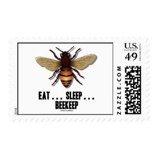 Coma… el sueño… Beekeep (la abeja) Estampilla