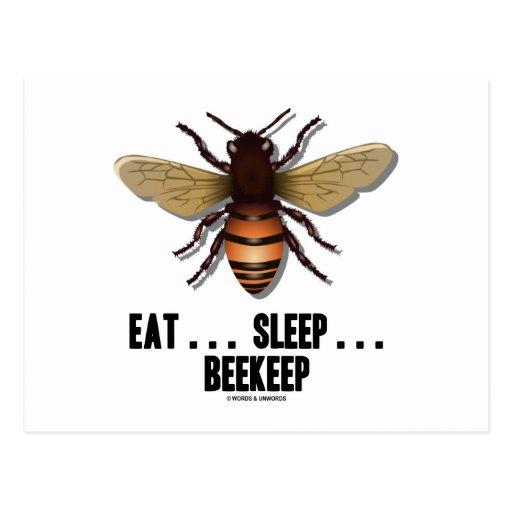 Coma… el sueño… Beekeep (la abeja) Postal