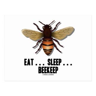 Coma… el sueño… Beekeep la abeja Tarjeta Postal