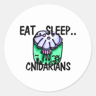Coma el sueño CNIDARIANS Etiquetas