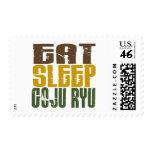 Coma el sueño Goju Ryu 1