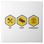 Coma la genealogía del sueño azulejos