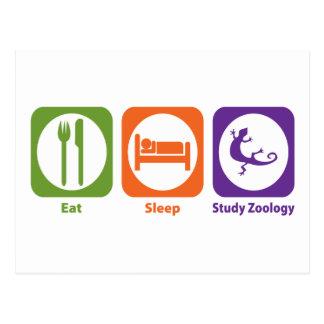 Coma la zoología del estudio del sueño tarjetas postales