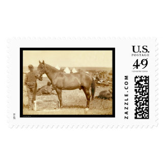 Comanche, Army Horse SD 1887 Stamp