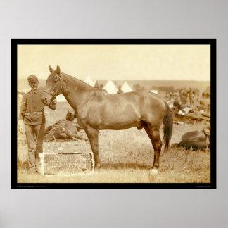 Comanche caballo SD 1887 del ejército Poster