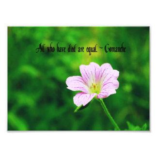 Comanche Proverb Photo Print